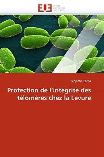 9786131550546: Protection de l'intégrité des télomères chez la Levure (Omn.Univ.Europ.) (French Edition)