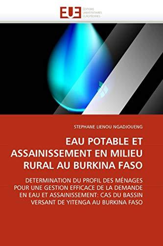 Eau Potable Et Assainissement En Milieu Rural Au Burkina Faso: STEPHANE LIENOU NGADJOUENG