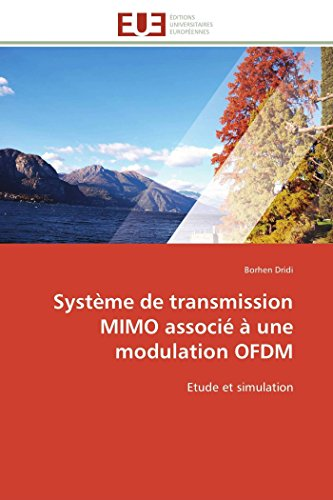 Systeme de Transmission Mimo Associe a Une: Dridi-B
