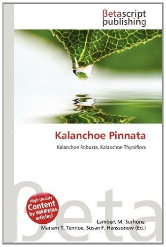 9786133167889: Kalanchoe Pinnata