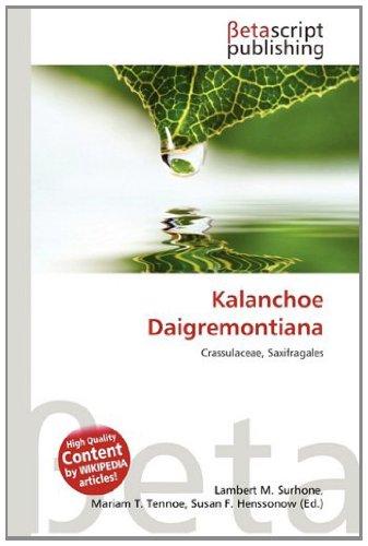 9786133168312: Kalanchoe Daigremontiana