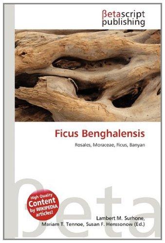 9786133215856: Ficus Benghalensis