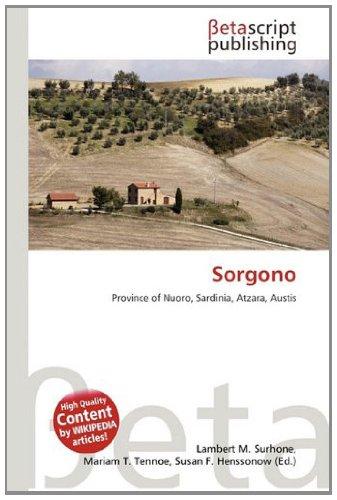 9786134622851: Sorgono