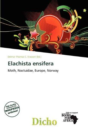 Elachista Ensifera (Paperback)