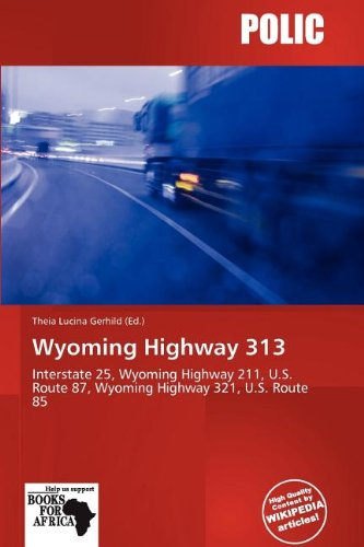 Wyoming Highway 313 (Paperback)