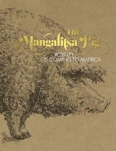 The Mangalitsa Pig: Mate Dobesch