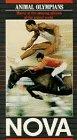 9786301105552: Animal Olympians [VHS]