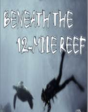 9786301395007: Beneath the 12 (Twelve) Mile Reef [VHS]