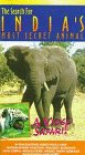 9786301913218: The Search for India's Most Secret Animal [VHS]