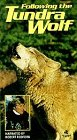 9786302775419: Following the Tundra Wolf [VHS]
