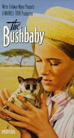 9786302804737: The Bushbaby [VHS]