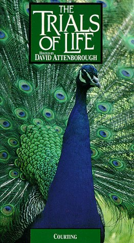 9786302913644: Trials of Life: Hosted By David Attenborough: Courting [VHS]