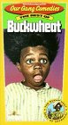9786303162522: Our Gang Comedies: The Best of Buckwheat [VHS]