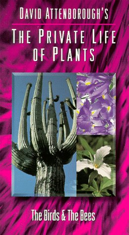 9786304030905: Private Life of Plants 3: Birds & Bees [VHS]