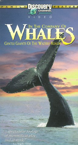 9786304886960: In the Company of Whales [USA] [VHS]