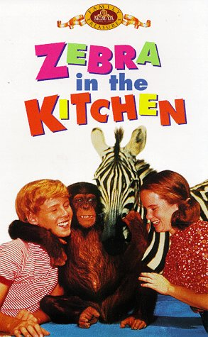 9786305082651: Zebra in the Kitchen [USA] [VHS]