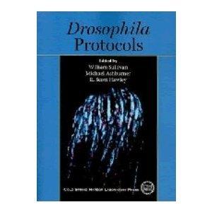 Drosophila Laboratory Manual (Molecular Cloning Laboratory Manual: MEI W. SHA