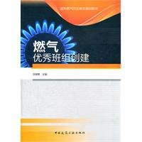 City gas industry jobs training materials: gas Outstanding Team create(Chinese Edition): SHEN JIN ...