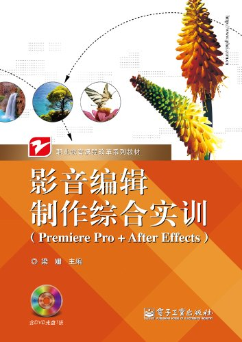 Audio and video editing and production of integrated training (Premiere Pro + After Effects) (with ...