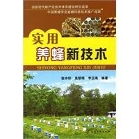 9787122107831: Practical Beekeeping Technology (Chinese Edition)