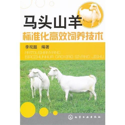 Matou goat rearing technology standardization and efficient: LI GUAN TI