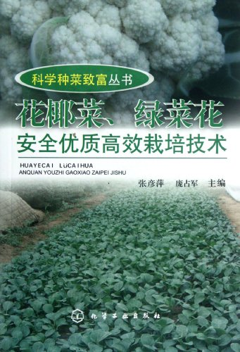 9787122143358: Techniques of cultivating safe,high quality cauliflowers and broccolis effectively (Chinese Edition)