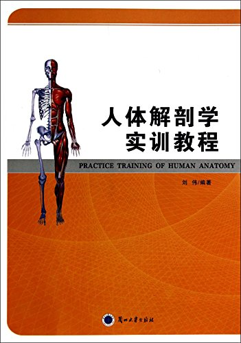 Human Anatomy Training Course(Chinese Edition): LIU WEI