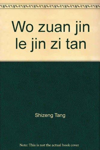 Wo zuan jin le jin zi tan: Shizeng Tang