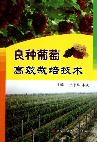 Superior grape seed high efficient cultivation technique: Yu Jing Hua