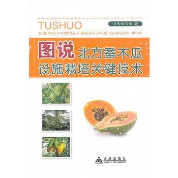 Diagram northern the papaya facility cultivation key technologies(Chinese Edition): LIU HUI CHUN