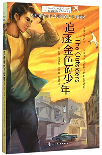 9787508533162: The Outsiders (Chinese Edition)