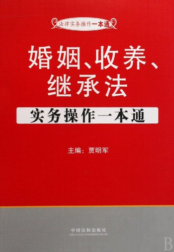 9787509312650: Marriage, Adoption and Inheritance Act practices in one book (Chinese Edition)