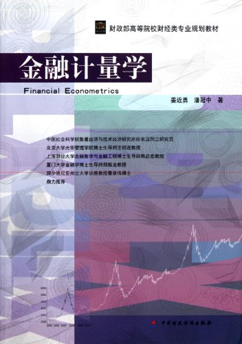 Financial Econometrics (Chinese Edition): yong, jiang jin