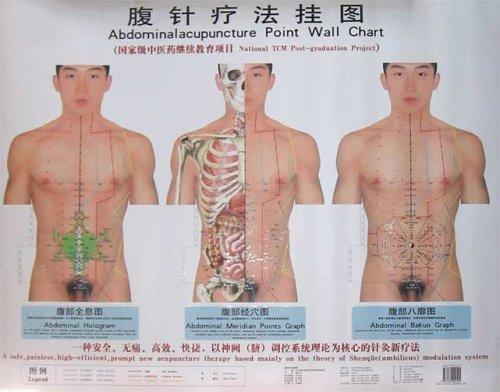 abdominal acupuncture wall chart(Chinese Edition): BAO ZHI YUN