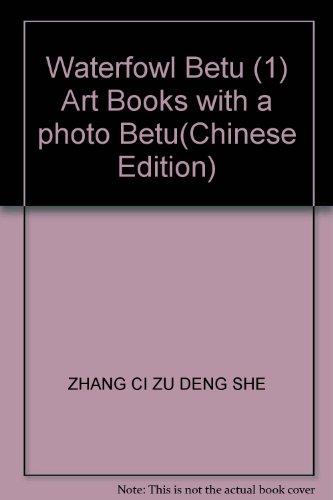 9787530510605: Waterfowl Betu (1) Art Books with a photo Betu(Chinese Edition)