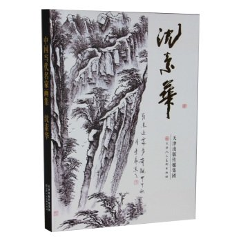 9787530568460: Chinese Contemporary Artists Paintings: Shen Su-hua(Chinese Edition)