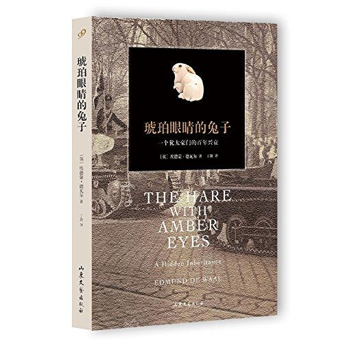 9787532949618: The Hare with Amber Eyes (Chinese Edition)