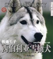 9787533025038: Siberian Husky (Arctic Prince) World dog domestication Collection(Chinese Edition)