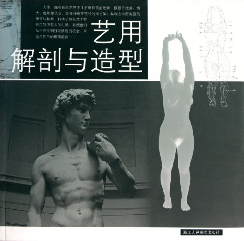 9787534029424: The Anatomy and Model for Art (Chinese Edition)