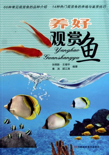 9787534945212: Breeding Ornamental Fish Well (Chinese Edition)