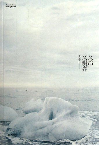 Cold and bright(Chinese Edition): WANG XIAO LI