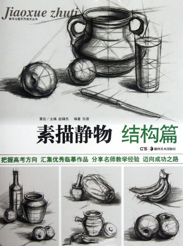 Sketch still life (structure articles)(Chinese Edition): ZHANG LEI ZHU