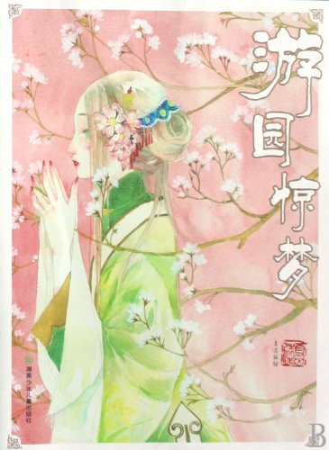 9787535838858: Peony and Butterfly (Chinese Edition)