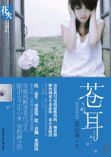 Homeless Heart (Chinese Edition): le xiao mi