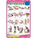 9787536559615: Baby parade flipchart Series: Infant physical training exercise(Chinese Edition)