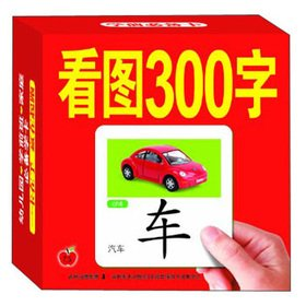 9787538665222: Figure 300 words(Chinese Edition)
