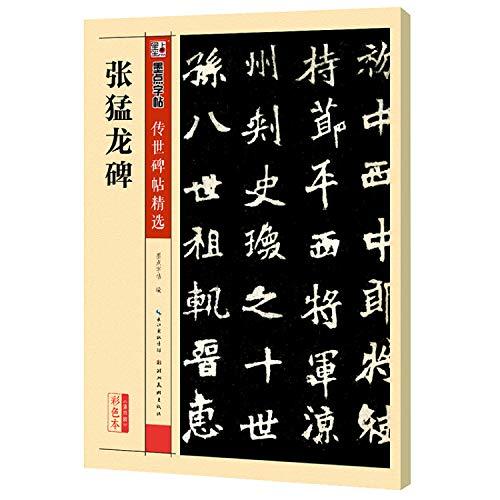 9787539482439: 张猛龙碑(彩色本)/传世碑帖精选