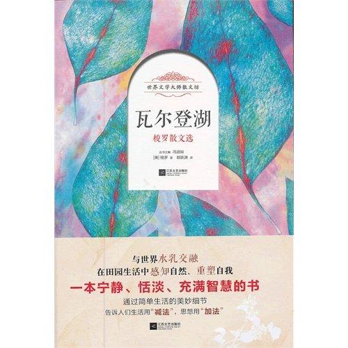 9787539954882: The tile Er ascends lake (Chinese edidion) Pinyin: wa er deng hu