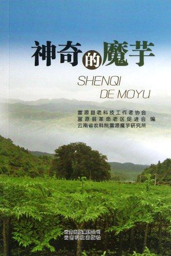 9787541668685: Magical Konjac (Chinese Edition)