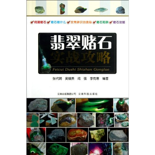 9787541669590: Practical Strategy for Jade Gamble (Chinese Edition)